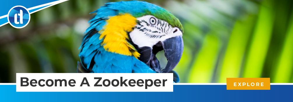 learndirect - become a Zookeeper