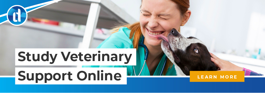 learndirect - How do I become a Veterinary Support Assistant?