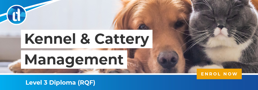 LD | Kennel and Cattery Management | CTA