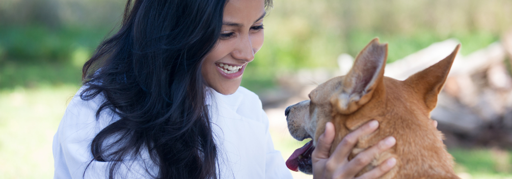 learndirect - What Animal Care Course is right for me?