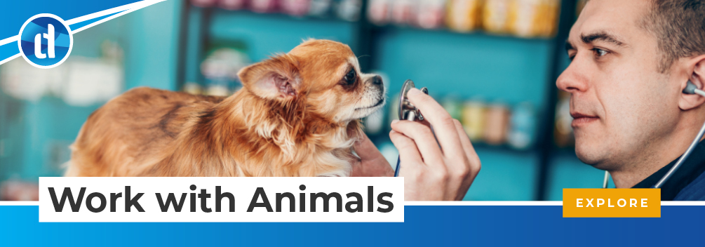 learndirect - Get qualified to work with animals