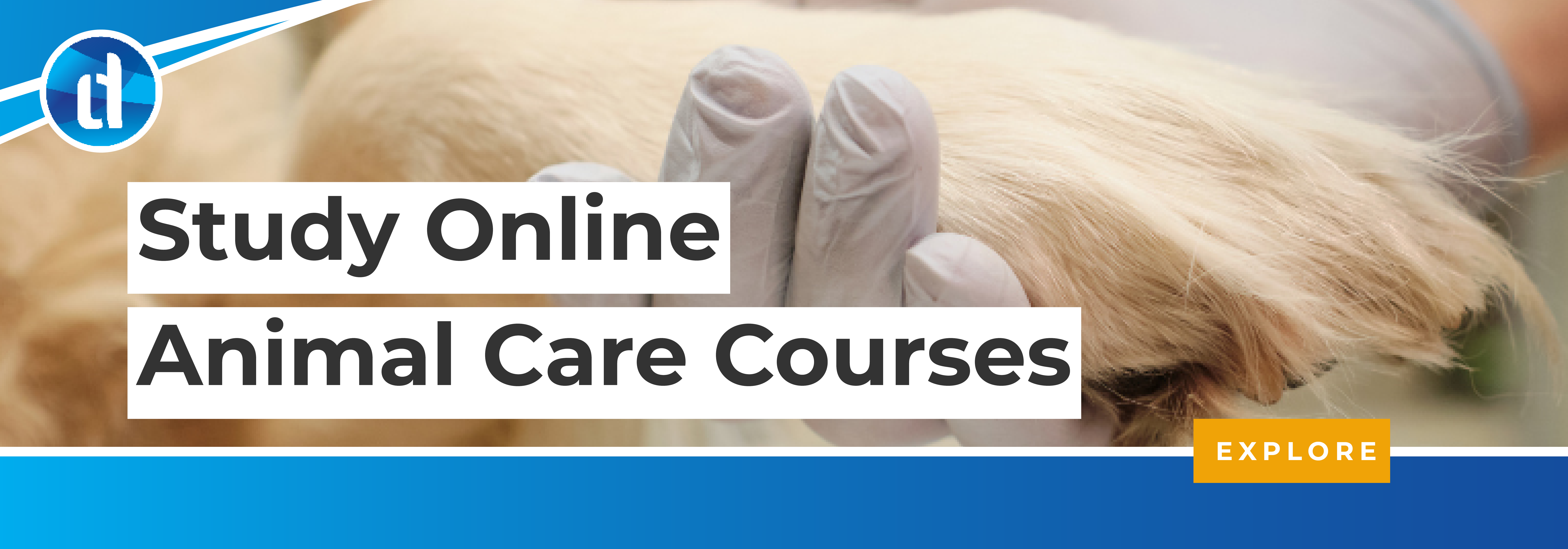 learndirect - online animal care courses